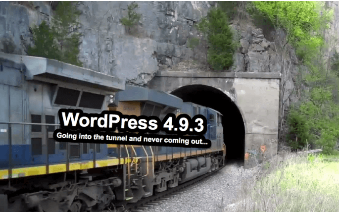 Going into the WordPress 4.9.3 version tunnel